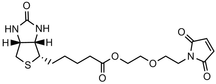 马来酰亚胺二聚乙二醇生物素酯