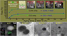 抗1100°C高温的异质孪晶纳米金催化剂